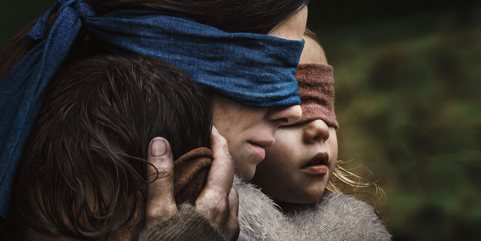 Netflix Bird Box Challenge Warning